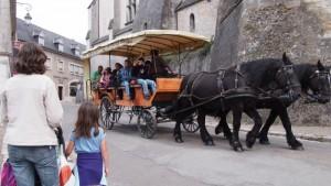 Coche de caballos en Blois